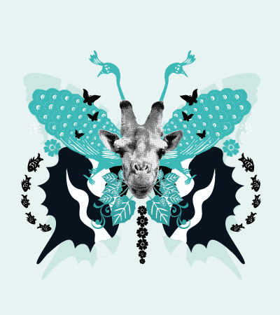 collage-butterfly-illustration-baby-wear