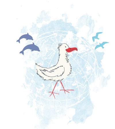 seagull-faded-design